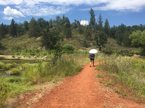 PCT: Day 104