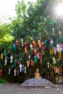 2013-11-12 Thailand Day 05, Wat Phan Tao, Chiang Mai, Loy Kratong Preperations   by Qsimple, Memories For The Future Photography