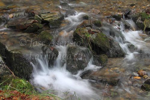 Parque Natural de Gorbeia #DePaseoConLarri #Photography 2588