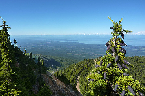 View north from Mount Washington to Campbell River, British Columbia