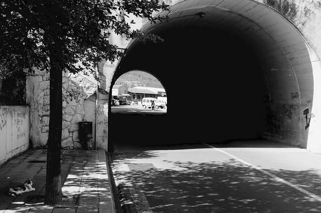 A la sombra.....