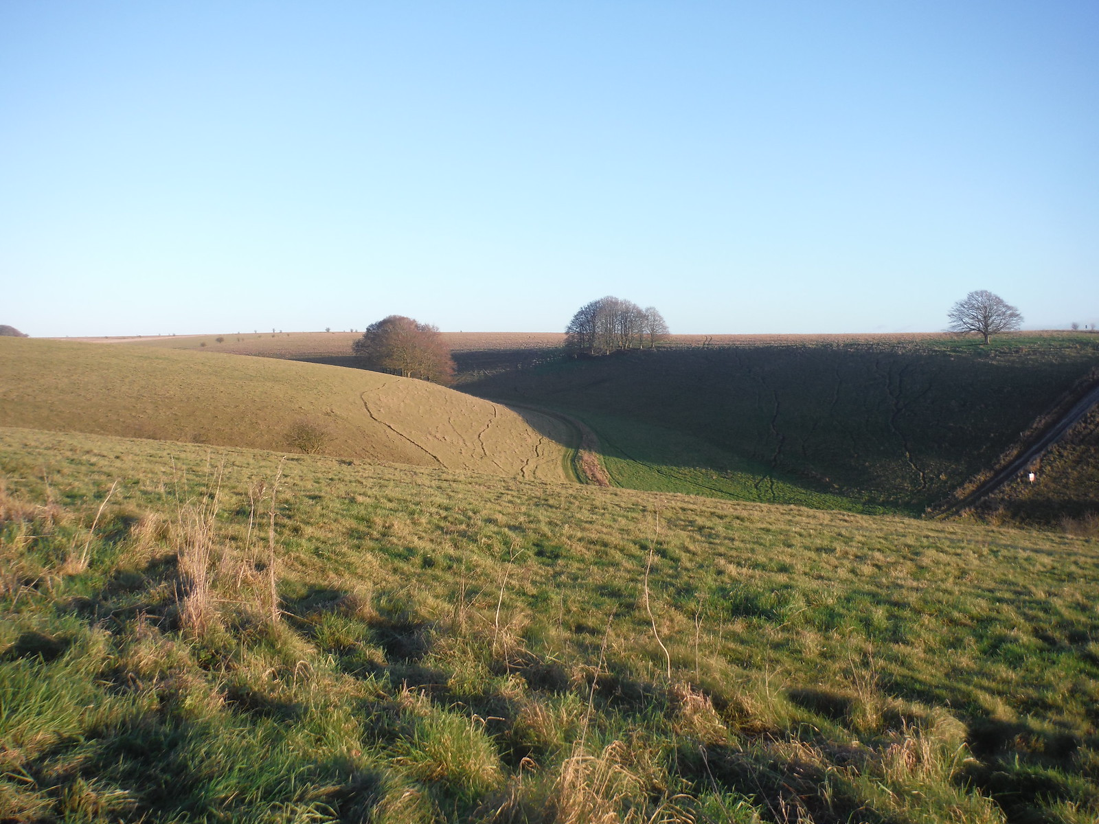 Unnamed Coombe, off American Road, Salisbury Plain SWC Walk 286 Westbury to Warminster (via Imber Range)