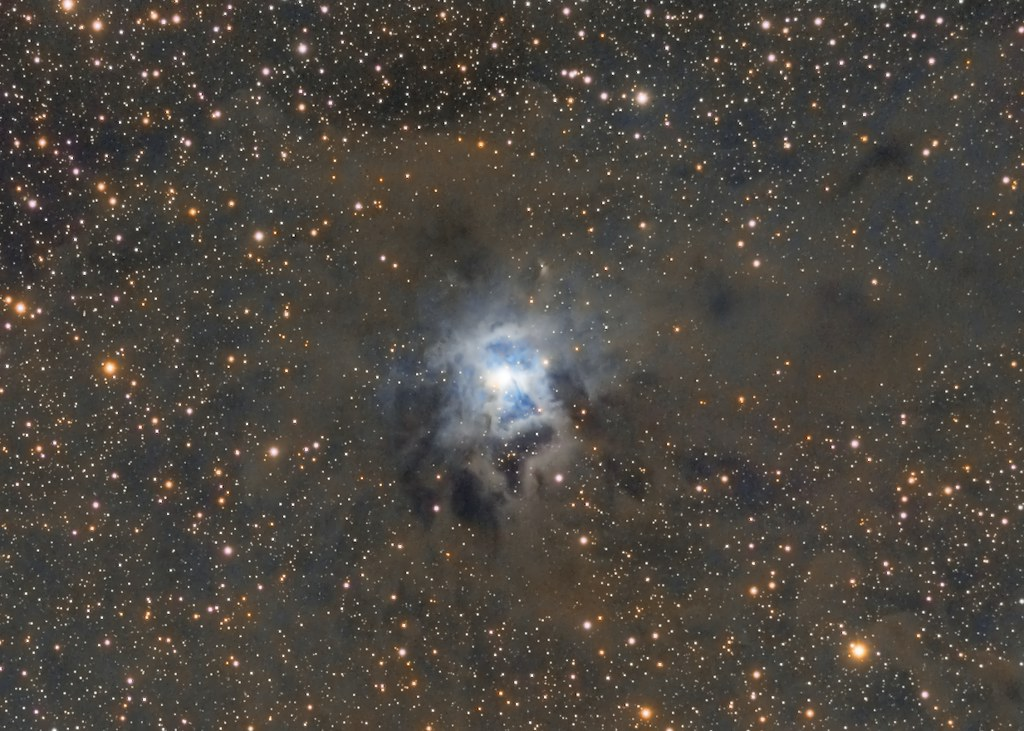 NGC 7023 - Iris Nebula (Collaboration)