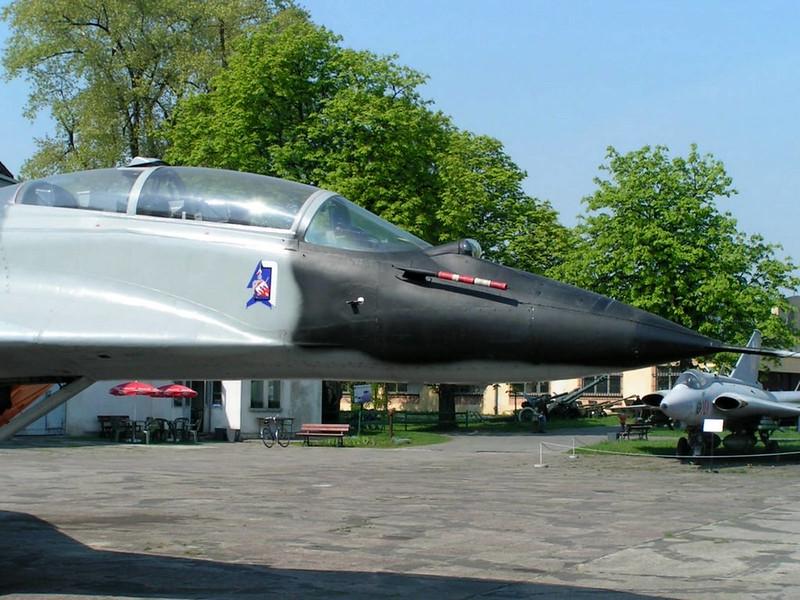 MiG-29 (5)