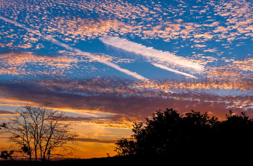 light sunset summer england sky sun tree silhouette clouds countryside kent nikon vibrant contrails maidstone lightroom yalding d5000 35f18 bestofsuperstars