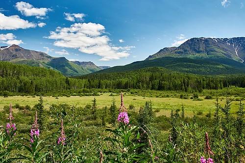 Landscape viewed from the Stewart-Cassiar Highway 37, Northern British Columbia