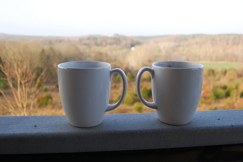 JR_coffee cups view_cabin12 | by vastateparksstaff
