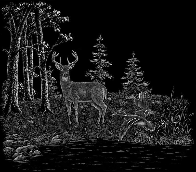 Deer and ducks