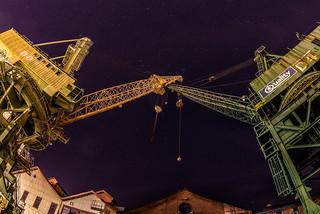 Crane (D8) vs. Crane (D4)