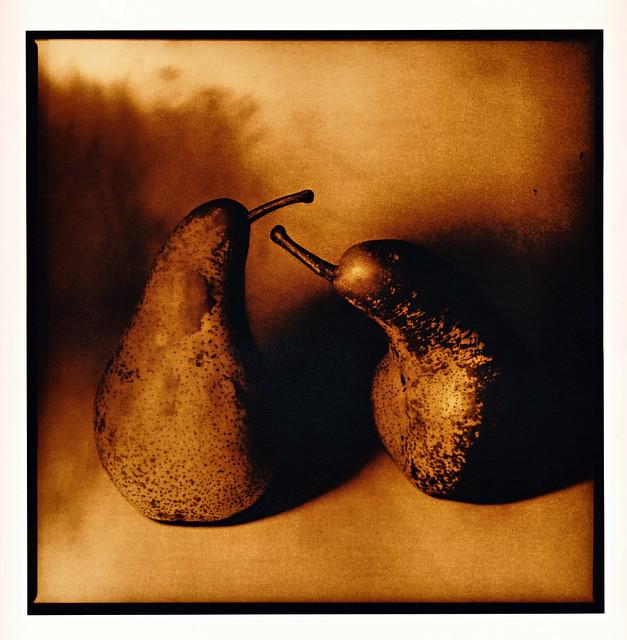 Due pere (Da Vinci stilllife)