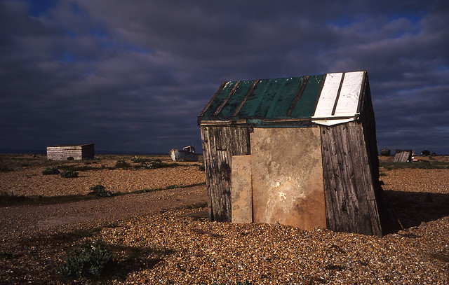 Dungeness | Icon II
