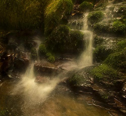 water creek forest river waterfall moss woods sweden stones icm halland mygearandme photographyforrecreation