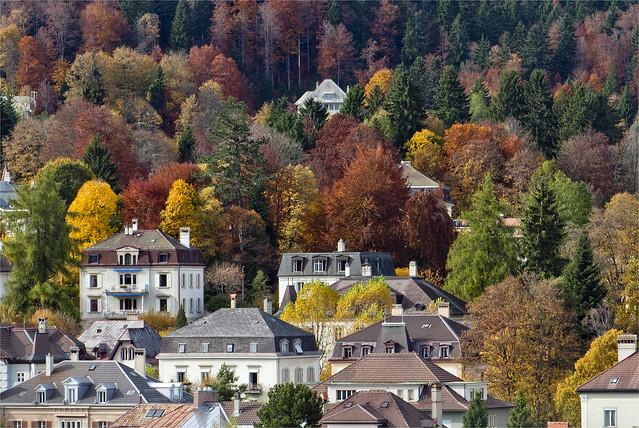 La Chaux-de-Fonds in Autumn Time. No. 63.