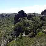 06 Viajefilos en Australia. Cathedral Rock NP 25