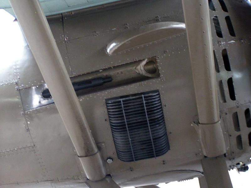 PZL P11c (11)
