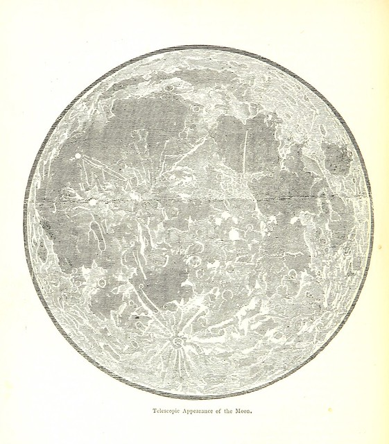 British Library digitised image from page 286 of
