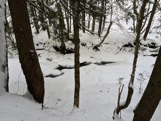 vermont norwich snowshoeing billballardtrail