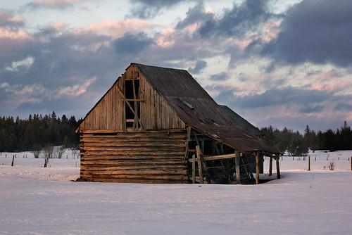 old winter barn late ilobsterit
