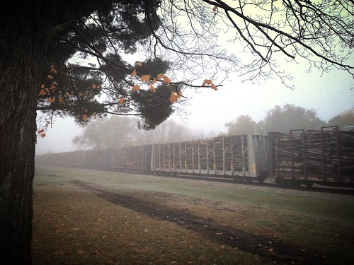 railroad fog wisconsin train sunrise timber rail lumber wausau