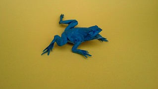 Japanese tree frog test fold | by Phillip Curl
