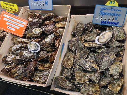 Oysters at Marche d'Aligre, Paris