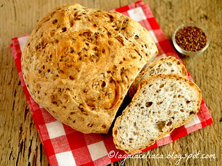 Pane ai semi di lino | by mammadaia