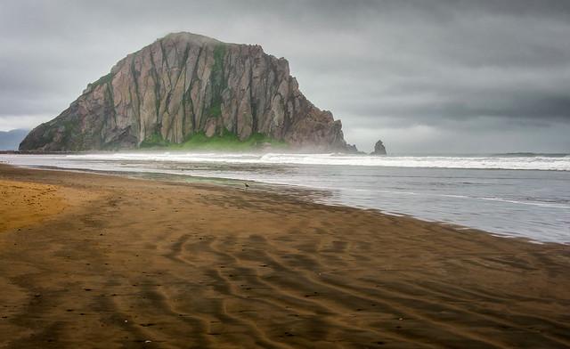 Morro Rock - Textured