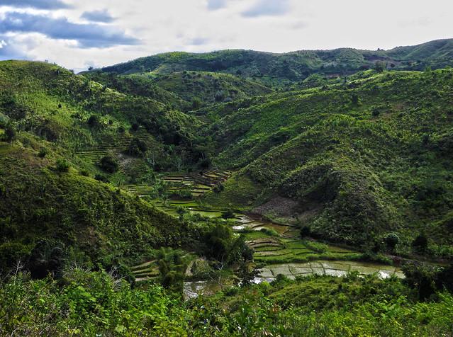Madagascar5 - 069