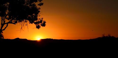 arizona sunrise landscape desert scottsdale sanctuarycamelbackmountainresortspa