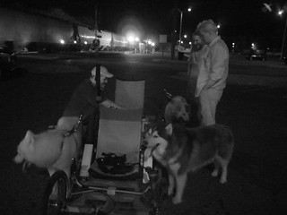 WooFPAK & WooFDriver Pit Crew At Railroad Stop! | by woofdriver