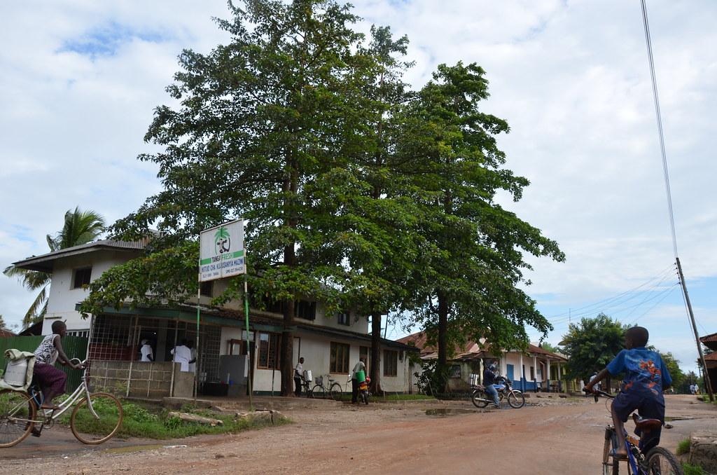 Milk collection centre in Tanga, Tanzania