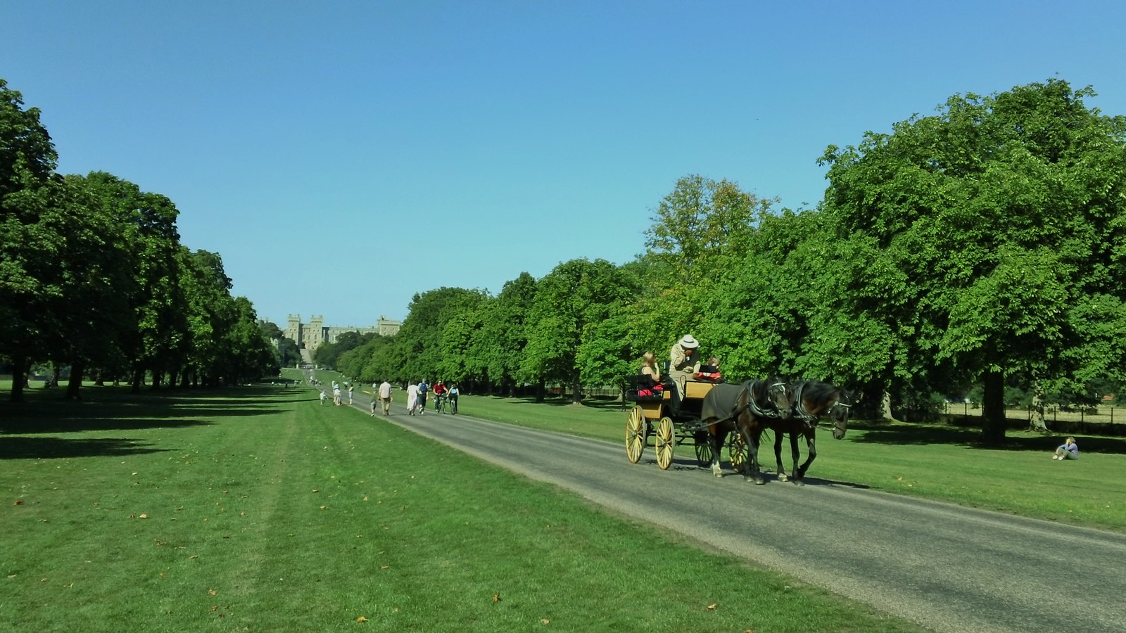 Long Walk, Windsor but not too long a drive in a horse-drawn carriage