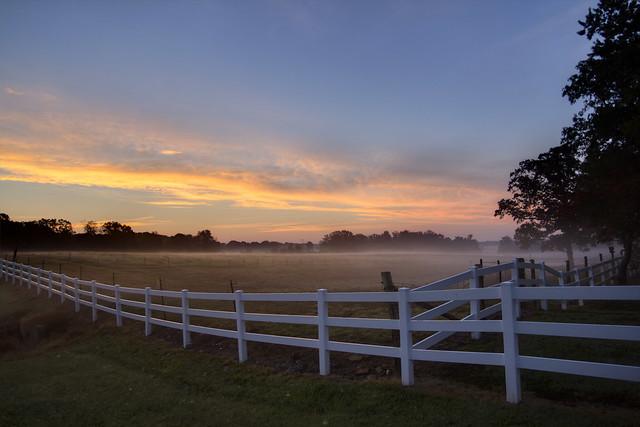 Mist covered field, Bon Air mountain, White Co, TN