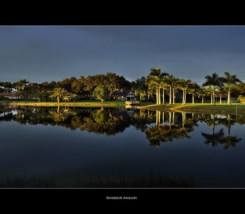 travel light sunset vacation sunlight lake reflection landscape golden florida miami palm palmtree fortlauderdale davie lastlight daviefl realstate shobeiransari