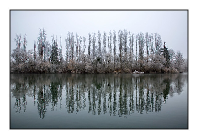 La grisaille de l'hiver