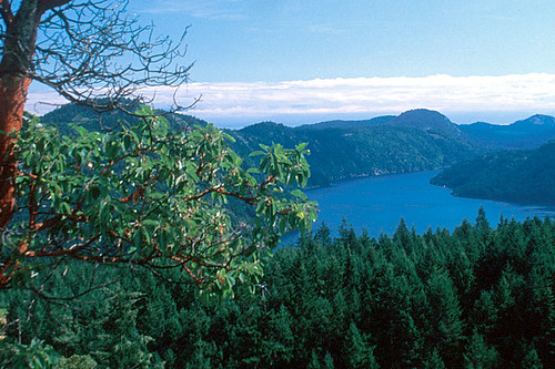 Malahat, Greater Victoria, Vancouver Island, British Columbia, Canada
