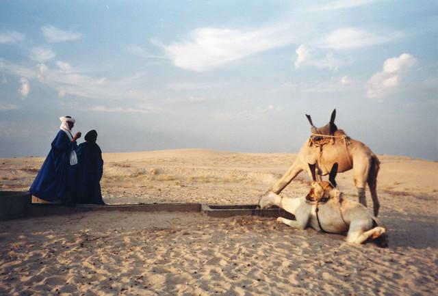 Mali, près de Tombouctou