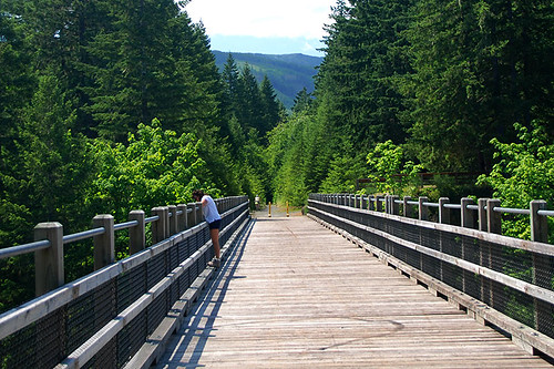 66 Mile Trestle over the Cowichan River in Cowichan River Park, Cowichan Valley, Vancouver Island, British Columbia, Canada