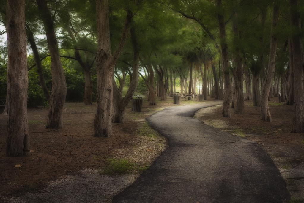 Walkway Between Two Beaches