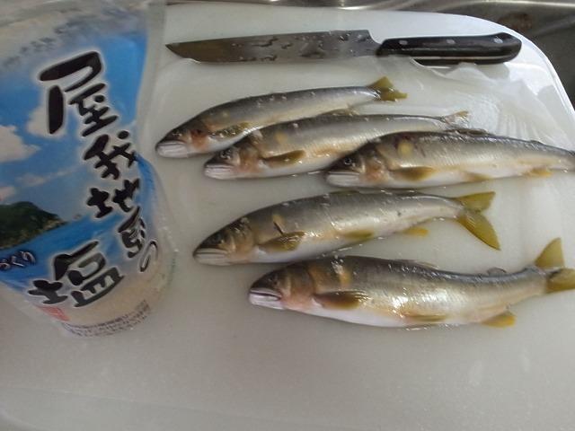<p>b)沖縄の屋我地島で美味しい塩を鮎にふりかけ、7割ほど焼きます・</p>