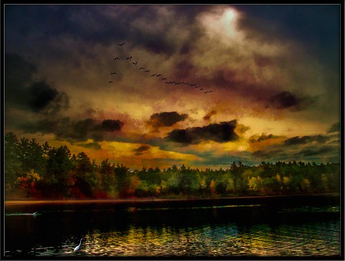 walden pond concord ma usa sunset reflections birds water clear crisp photoshop flickr google bing yahoo daum image getty stumbleupon facebook national geographic photo manipulation ishkolorkraft interesting creative color surreal avant guarde pinterest tinder tumbler unique unusual fascinating
