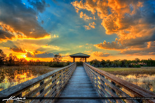 Boardwalk Wetlands Sunset Sweetbay Park West Palm Beach Florida | by Captain Kimo