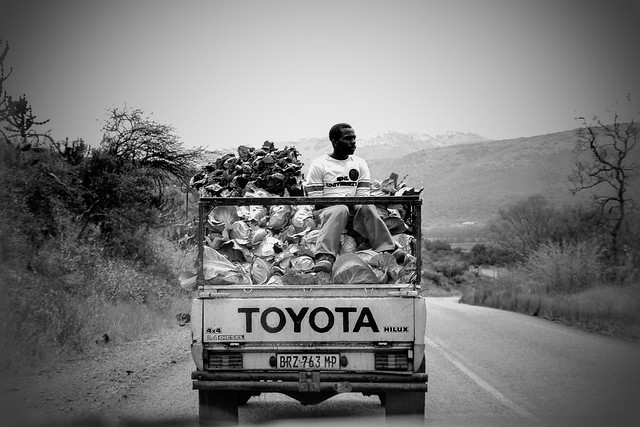 A Day in Africa