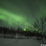 Viajefilos en Tromso, Auroras Boreales 003