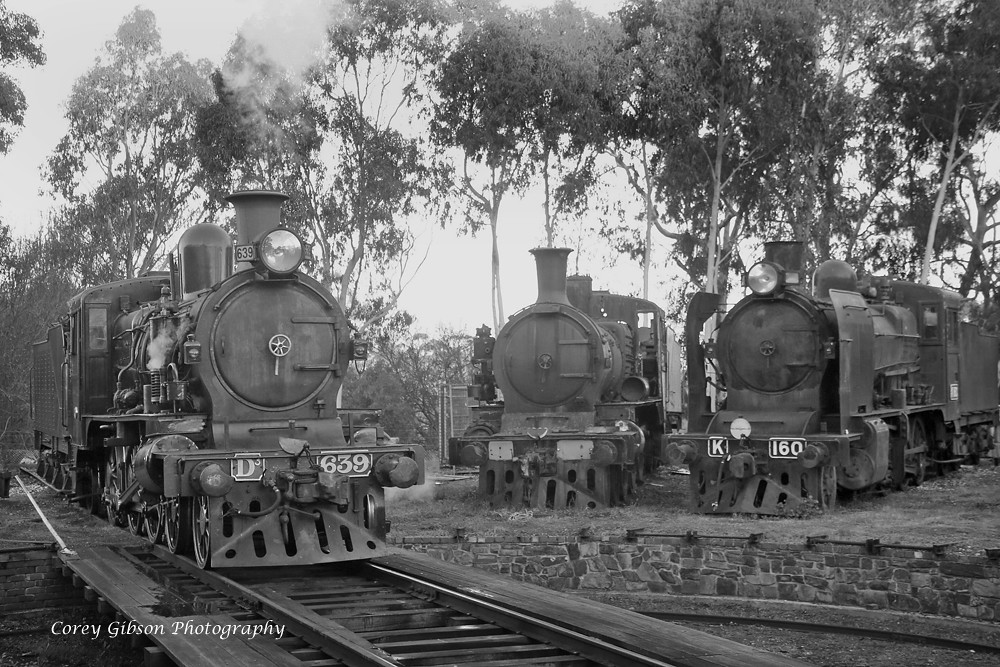 D3 639, D3 619 & K160 at Maldon turntable by Corey Gibson
