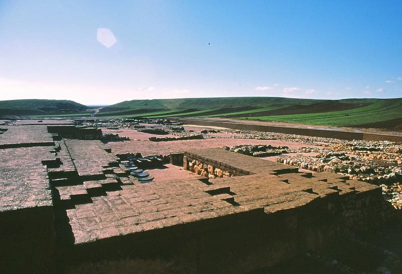 Ebla 2002-0011