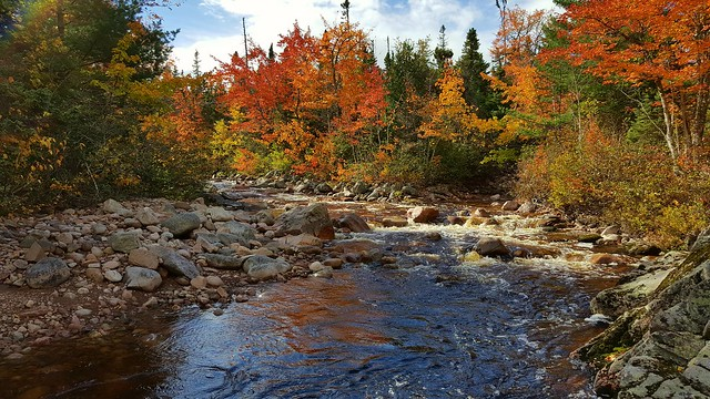 Autumn Colors over Mary Ann River