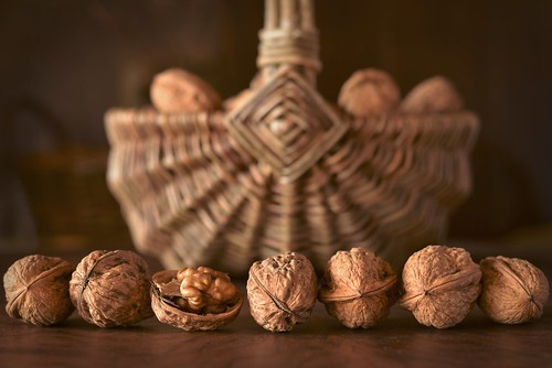 Le panier de noix - Walnuts and basket | by Solange B