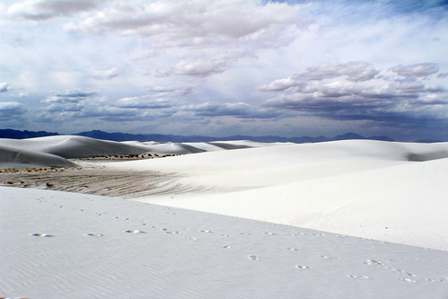 whitesands2014 017 | by julie francois