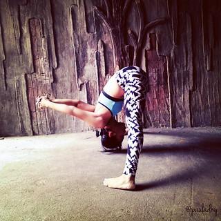 prasarita padottanasana c globalyogis jojoyoga yoga wi
